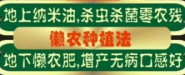 黄石硕果轩贸易有限公司