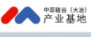 中亚大冶产业园管理有限公司